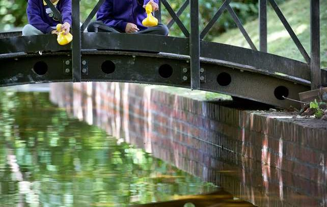 duck racing in cyfartha park